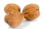 Ořechy,semena
